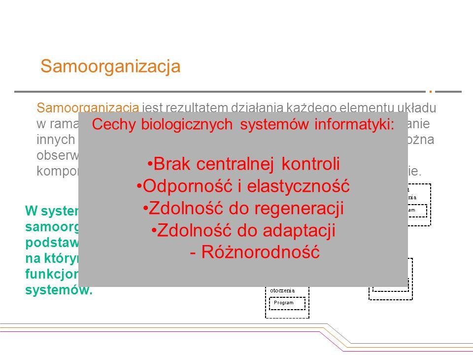 Samoorganizacja Samoorganizacja jest rezultatem działania każdego elementu układu w ramach systemu, w warunkach stworzonych przez oddziaływanie innych