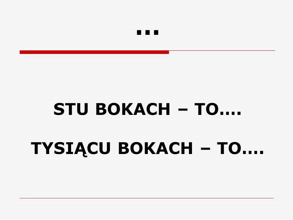 … STU BOKACH – TO…. TYSIĄCU BOKACH – TO….