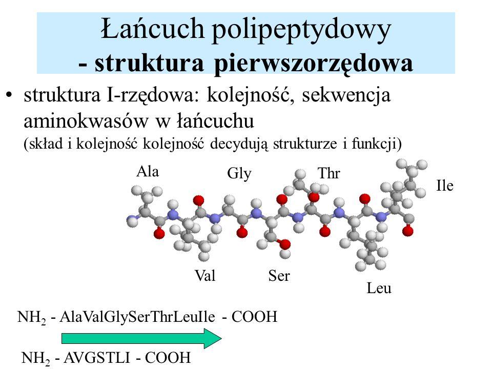 Łańcuch polipeptydowy - struktura pierwszorzędowa struktura I-rzędowa: kolejność, sekwencja aminokwasów w łańcuchu (skład i kolejność kolejność decydu