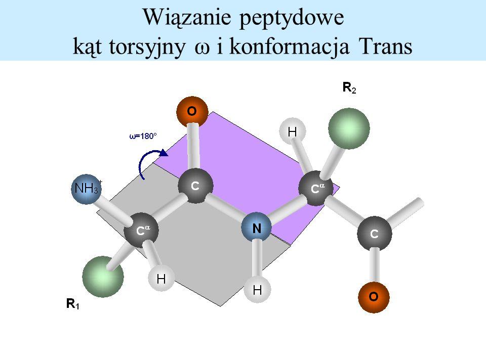 Wiązanie peptydowe kąt torsyjny ω i konformacja Trans