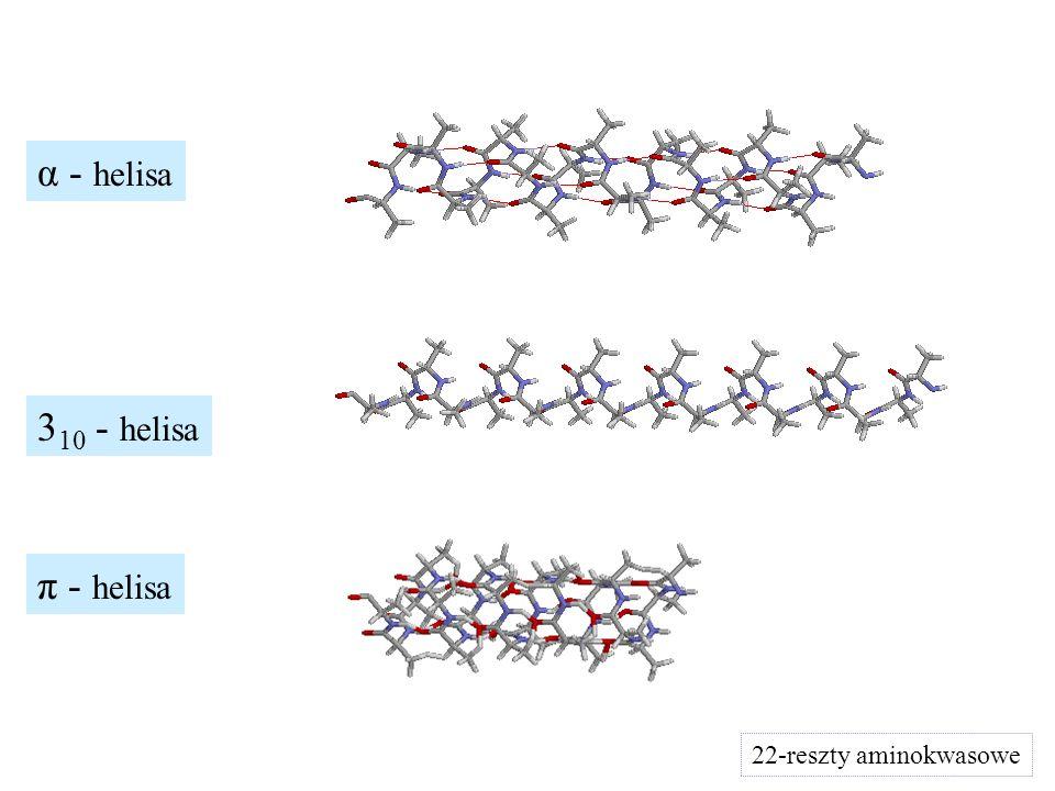 3 10 - helisa π - helisa 22-reszty aminokwasowe