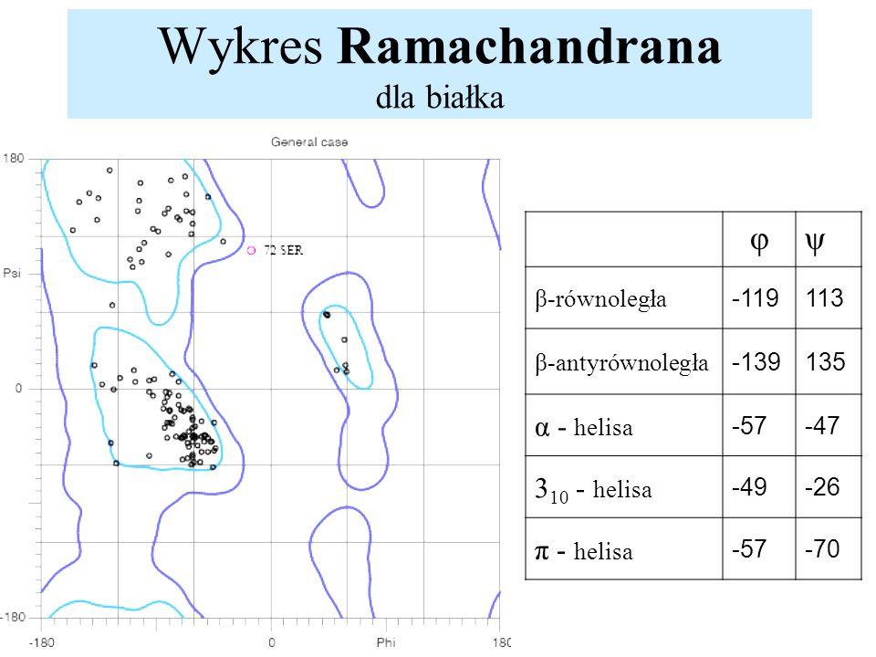 Wykres Ramachandrana dla białka φψ β-równoległa -119113 β-antyrównoległa -139135 α - helisa -57-47 3 10 - helisa -49-26 π - helisa -57-70