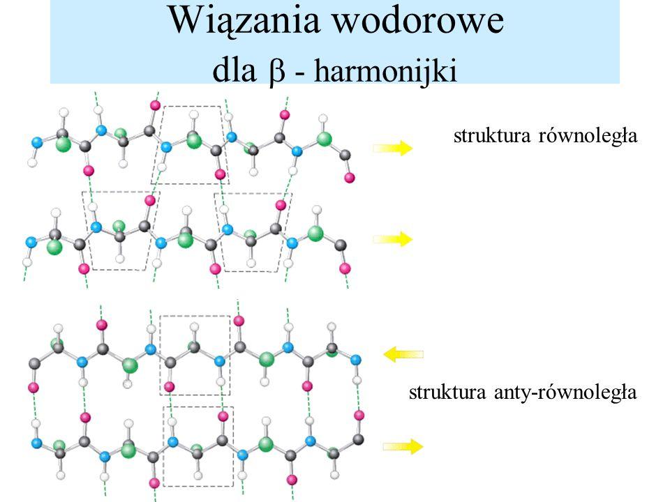 Wiązania wodorowe dla - harmonijki struktura równoległa struktura anty-równoległa
