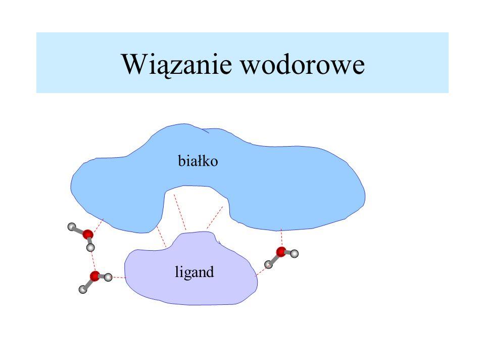 Wiązanie wodorowe białko ligand