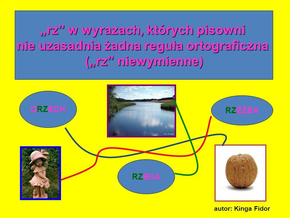 rz w wyrazach, których pisowni nie uzasadnia żadna reguła ortograficzna (rz niewymienne) ORZECH RZEŹBA RZEKA autor: Kinga Fidor