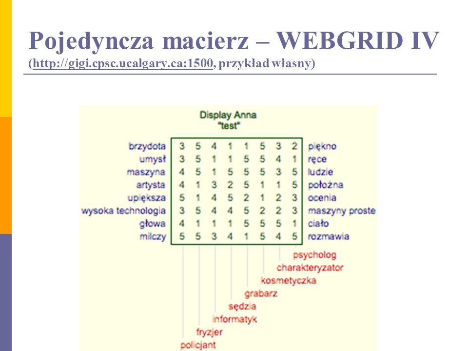 Pojedyncza macierz – WEBGRID IV (http://gigi.cpsc.ucalgary.ca:1500, przykład własny)http://gigi.cpsc.ucalgary.ca:1500