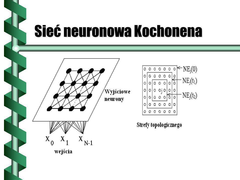 Sieć neuronowa Kochonena