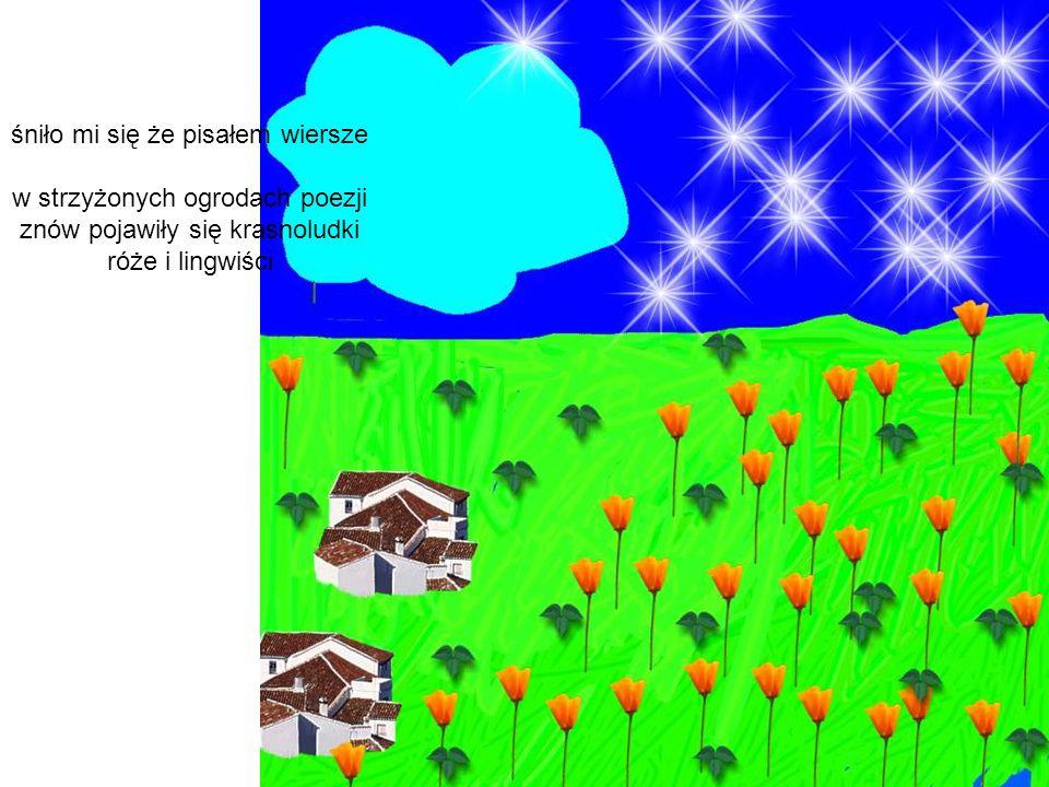 śniło mi się że pisałem wiersze w strzyżonych ogrodach poezji znów pojawiły się krasnoludki róże i lingwiści