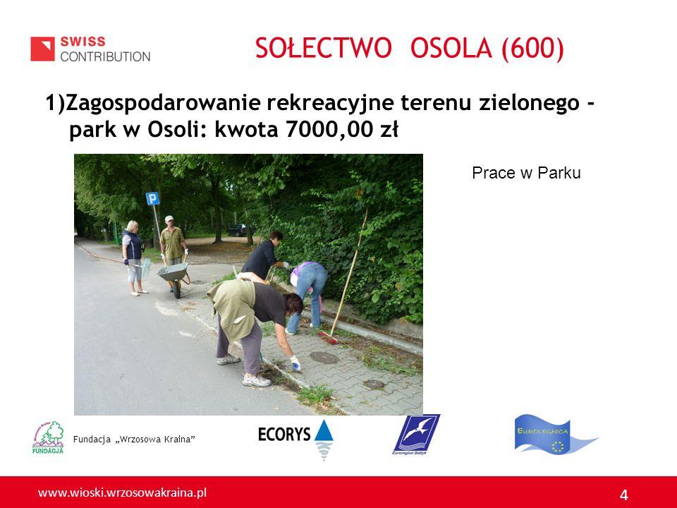 www.wioski.wrzosowakraina.pl 4 1)Zagospodarowanie rekreacyjne terenu zielonego - park w Osoli: kwota 7000,00 zł Fundacja Wrzosowa Kraina Prace w Parku