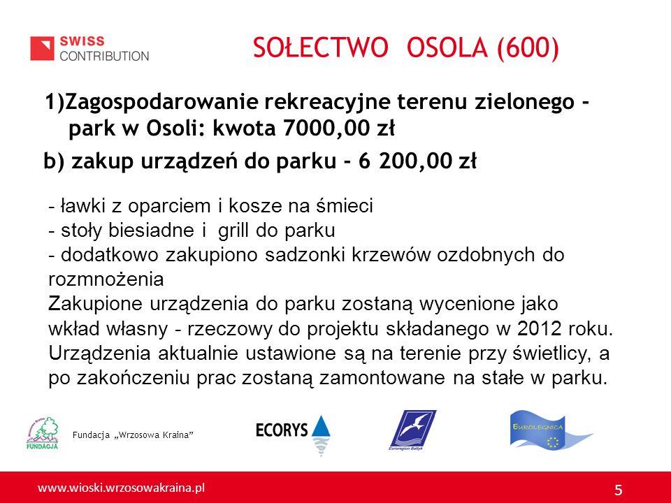 www.wioski.wrzosowakraina.pl 5 1)Zagospodarowanie rekreacyjne terenu zielonego - park w Osoli: kwota 7000,00 zł b) zakup urządzeń do parku - 6 200,00