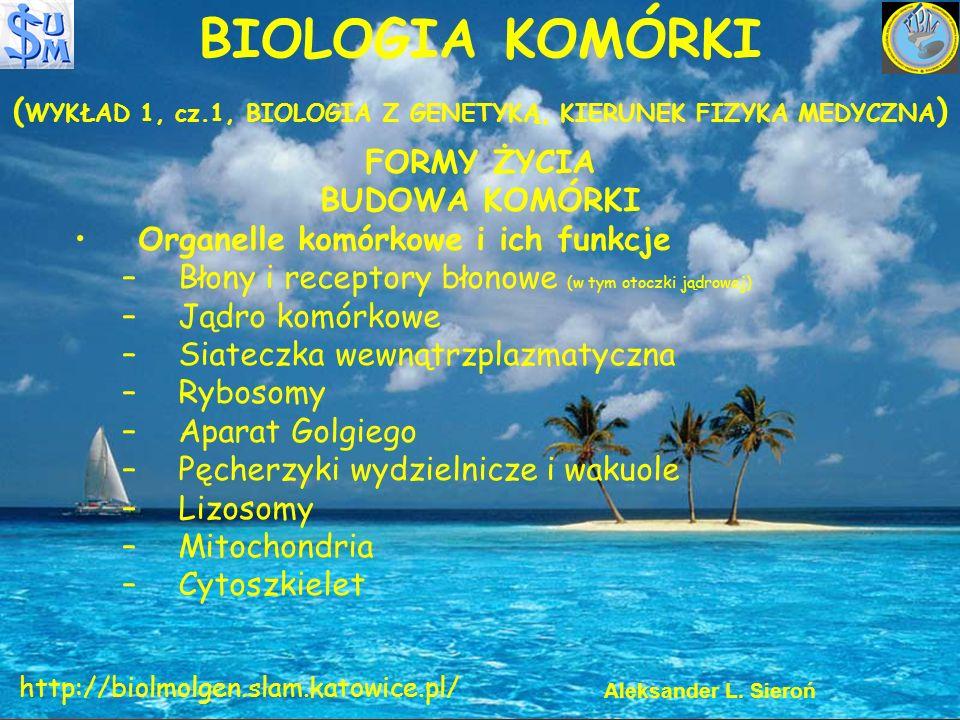 BIOLOGIA KOMÓRKI ( WYKŁAD 1, cz.1, BIOLOGIA Z GENETYKĄ, KIERUNEK FIZYKA MEDYCZNA ) FORMY ŻYCIA BUDOWA KOMÓRKI Organelle komórkowe i ich funkcje –Błony