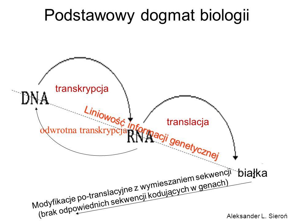 Podstawowy dogmat biologii białka transkrypcja translacja odwrotna transkrypcja Liniowość informacji genetycznej Modyfikacje po-translacyjne z wymiesz