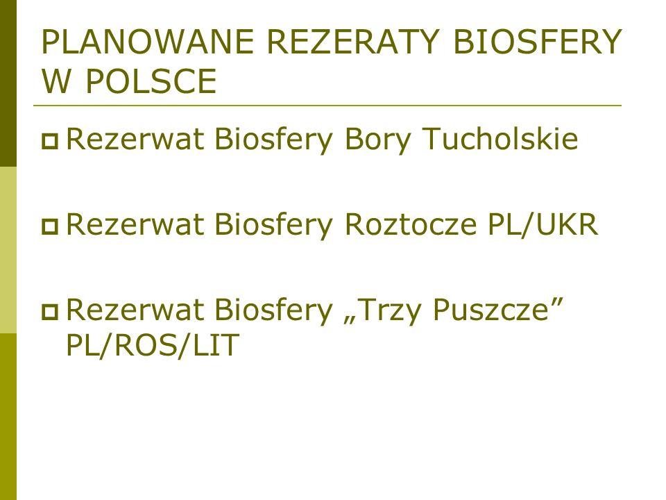 PLANOWANE REZERATY BIOSFERY W POLSCE Rezerwat Biosfery Bory Tucholskie Rezerwat Biosfery Roztocze PL/UKR Rezerwat Biosfery Trzy Puszcze PL/ROS/LIT