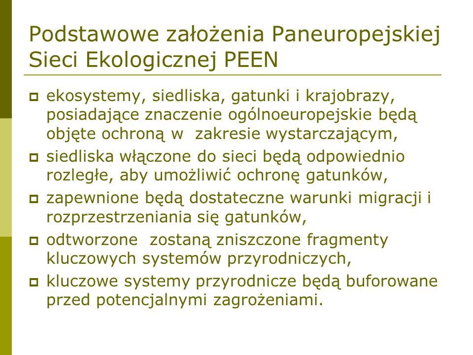 Podstawowe założenia Paneuropejskiej Sieci Ekologicznej PEEN ekosystemy, siedliska, gatunki i krajobrazy, posiadające znaczenie ogólnoeuropejskie będą