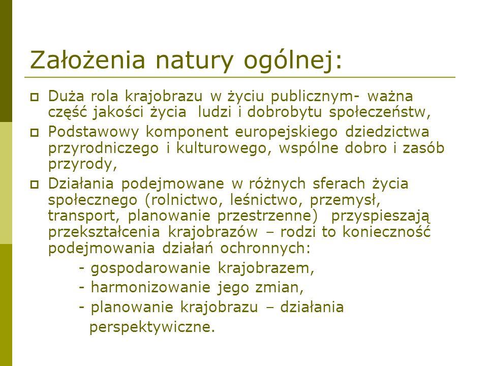 Założenia natury ogólnej: Duża rola krajobrazu w życiu publicznym- ważna część jakości życia ludzi i dobrobytu społeczeństw, Podstawowy komponent euro