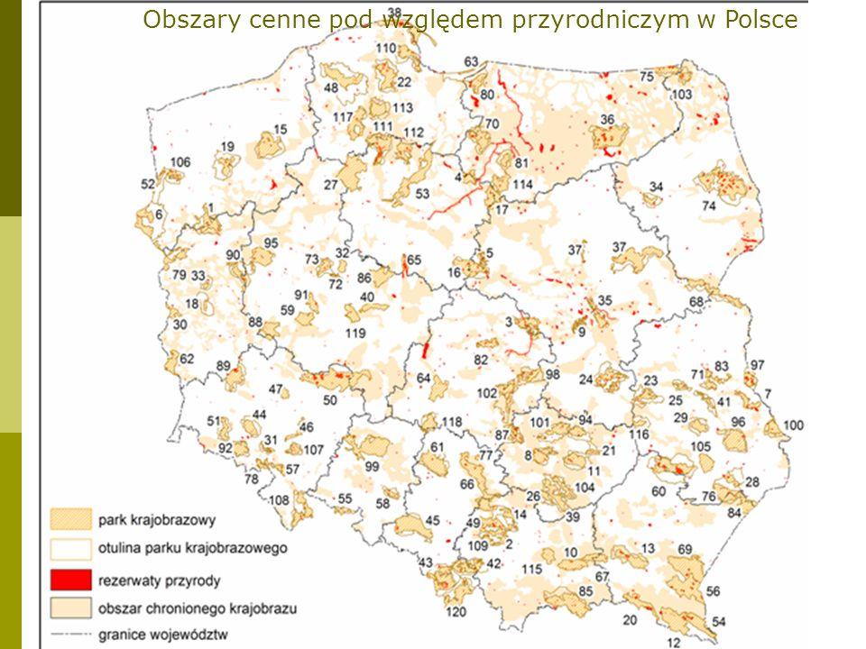 STREFOWANIE REZERWATU BIOSFERY strefa centralna (core zone) strefa buforowa (buffer zone) strefa przejściowa (transition zone)