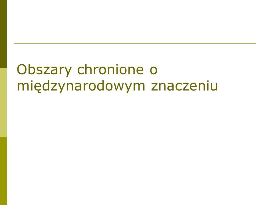 REZERWATY BIOSFERY W POLSCE pracami kieruje Polski Komitet Narodowy UNESCO-MaB przy Prezydium PAN utworzono 9 rezerwatów biosfery, w tym 3 międzynarodowe: a/ Rezerwat Biosfery Białowieża b/ Rezerwat Biosfery Babia Góra c/ Rezerwat Biosfery Jezioro Łuknajno d/ Słowiński Rezerwat Biosfery (1996) e/ Rezerwat Biosfery Karpaty Wschodnie PL/UKR/SLO f/ Rezerwat Biosfery Karkonosze PL/CZ g/ Tatrzański Rezerwat Biosfery PL/SLO h/ Rezerwat Biosfery Puszcza Kampinoska i/ Rezerwat Biosfery Polesie Zachodnie
