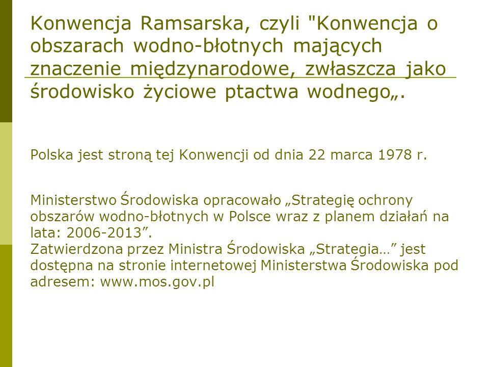 Na liście Konwencji Ramsarskiej jest 13 polskich obszarów wodno-błotnych o łącznej powierzchni 145.075 ha.