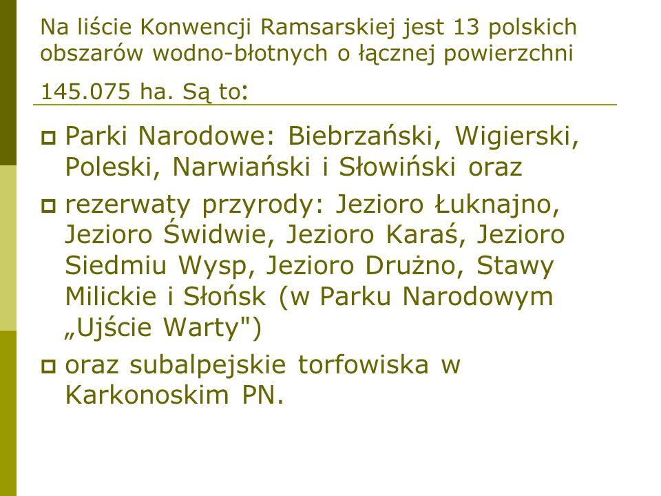 Na liście Konwencji Ramsarskiej jest 13 polskich obszarów wodno-błotnych o łącznej powierzchni 145.075 ha. Są to : Parki Narodowe: Biebrzański, Wigier