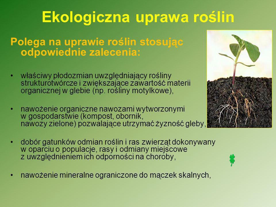 Ekologiczna uprawa roślin przykrywanie powierzchni gleby roślinnością przez jak najdłuższy okres w roku – są to wsiewki międzyplonów i poplonów, mechaniczne odchwaszczanie gleby i niestosowanie chemicznych środków ochrony roślin, używanie preparatów biologicznych i wyciągów roślinnych, wykorzystanie agrotechnicznych metody walki z chorobami, szkodnikami poprzez odpowiednie następstwa i sąsiedztwa roślin, stosowanie ekologicznych materiałów siewnych i nasadzeniowych.