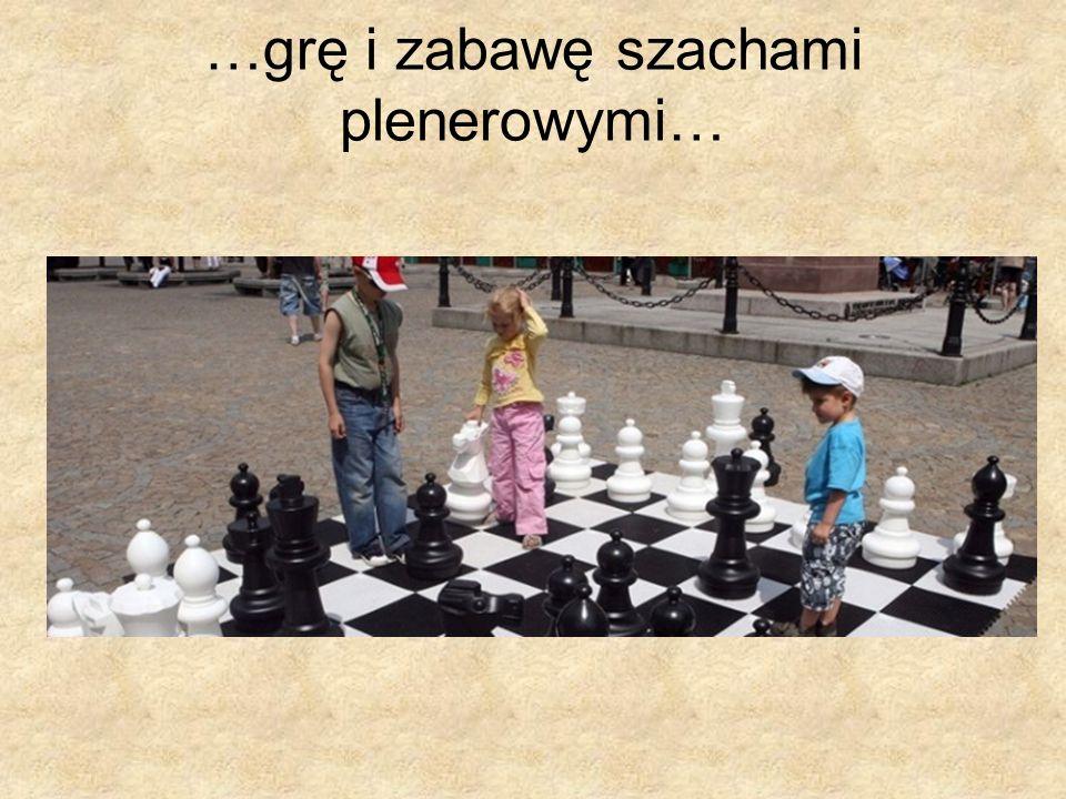 …grę i zabawę szachami plenerowymi…