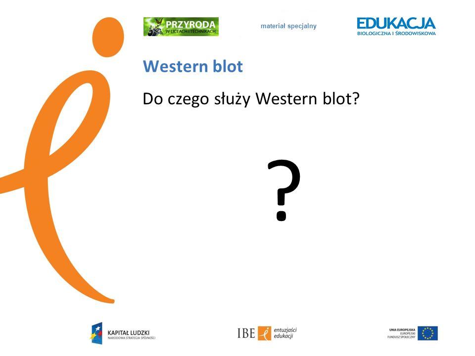 materiał specjalny Western blot Do czego służy Western blot? ?