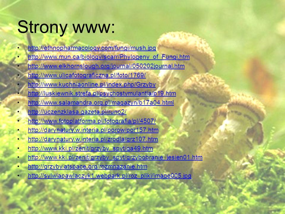 Strony www: http://ethnopharmacology.com/fungi/mush.jpg http://www.mun.ca/biology/scarr/Phylogeny_of_Fungi.htm http://www.elkhornslough.org/journal/05