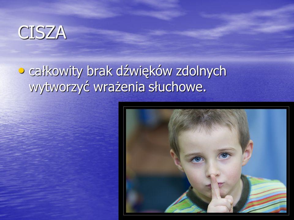 DŹWIĘK Dźwięki są jednym ze składników środowiska przyrodniczego człowieka.