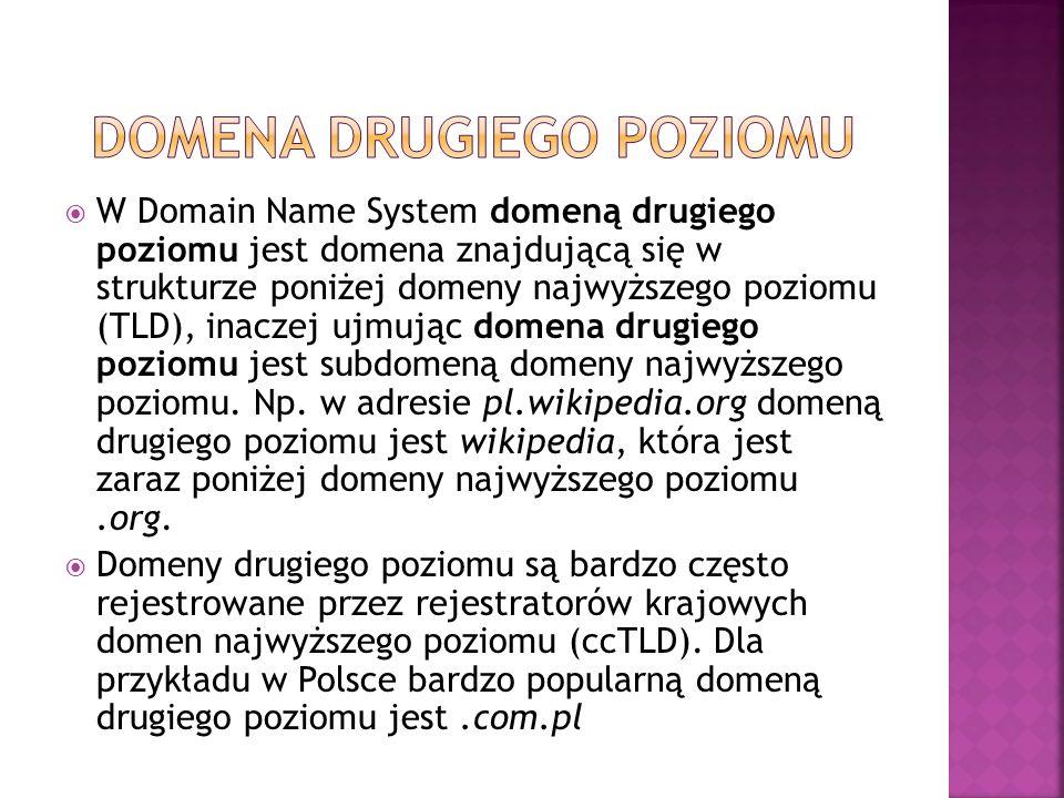 W Domain Name System domeną drugiego poziomu jest domena znajdującą się w strukturze poniżej domeny najwyższego poziomu (TLD), inaczej ujmując domena