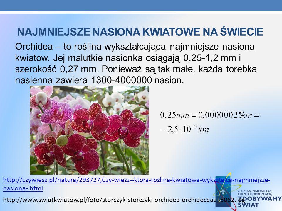 NAJMNIEJSZE NASIONA KWIATOWE NA ŚWIECIE Orchidea – to roślina wykształcająca najmniejsze nasiona kwiatow. Jej malutkie nasionka osiągają 0,25-1,2 mm i