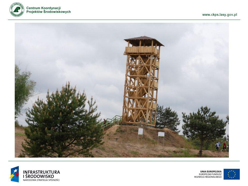 www.ckps.lasy.gov.pl Centrum Koordynacji Projektów Środowiskowych ul.