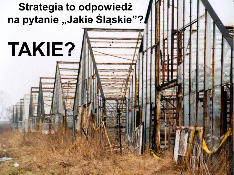 Strategia to odpowiedź na pytanie Jakie Śląskie? TAKIE?