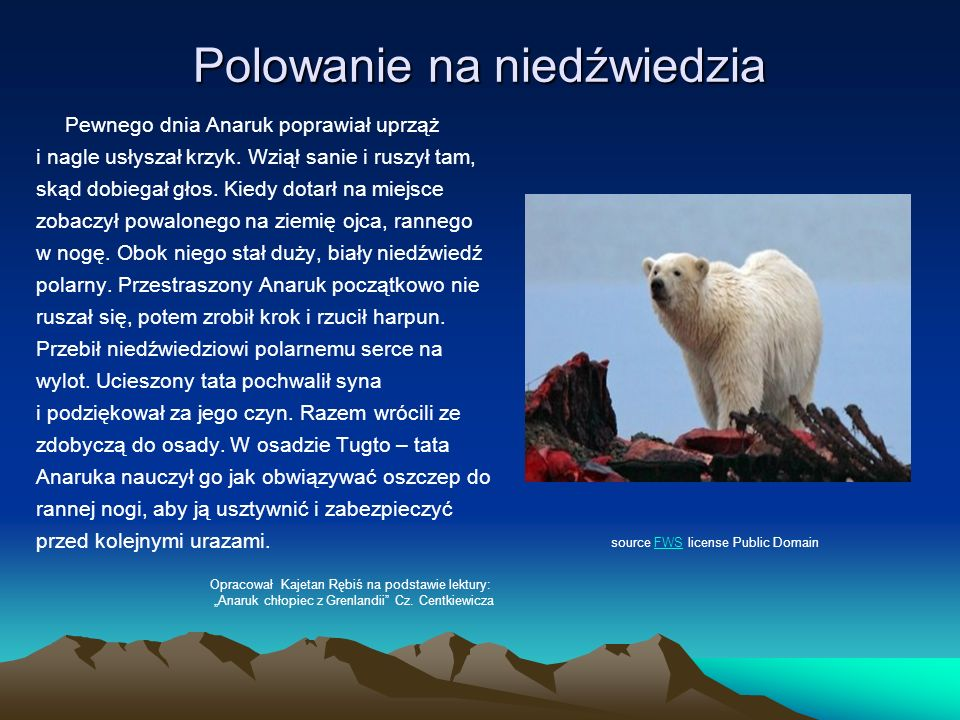 Polowanie na niedźwiedzia Pewnego dnia Anaruk poprawiał uprząż i nagle usłyszał krzyk. Wziął sanie i ruszył tam, skąd dobiegał głos. Kiedy dotarł na m