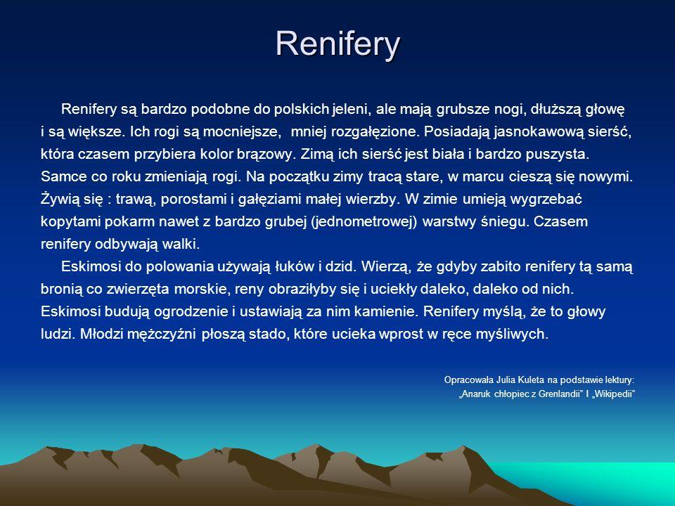 Renifery Renifery są bardzo podobne do polskich jeleni, ale mają grubsze nogi, dłuższą głowę i są większe. Ich rogi są mocniejsze, mniej rozgałęzione.