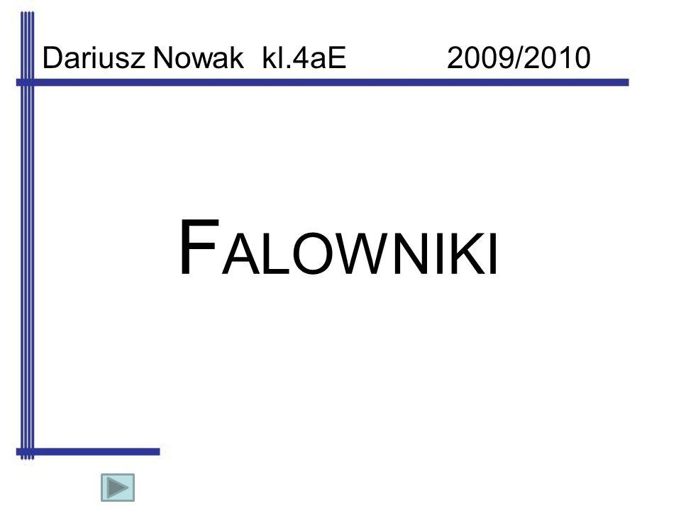 F ALOWNIKI Dariusz Nowak kl.4aE 2009/2010