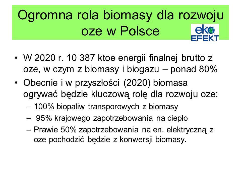 Ogromna rola biomasy dla rozwoju oze w Polsce W 2020 r.