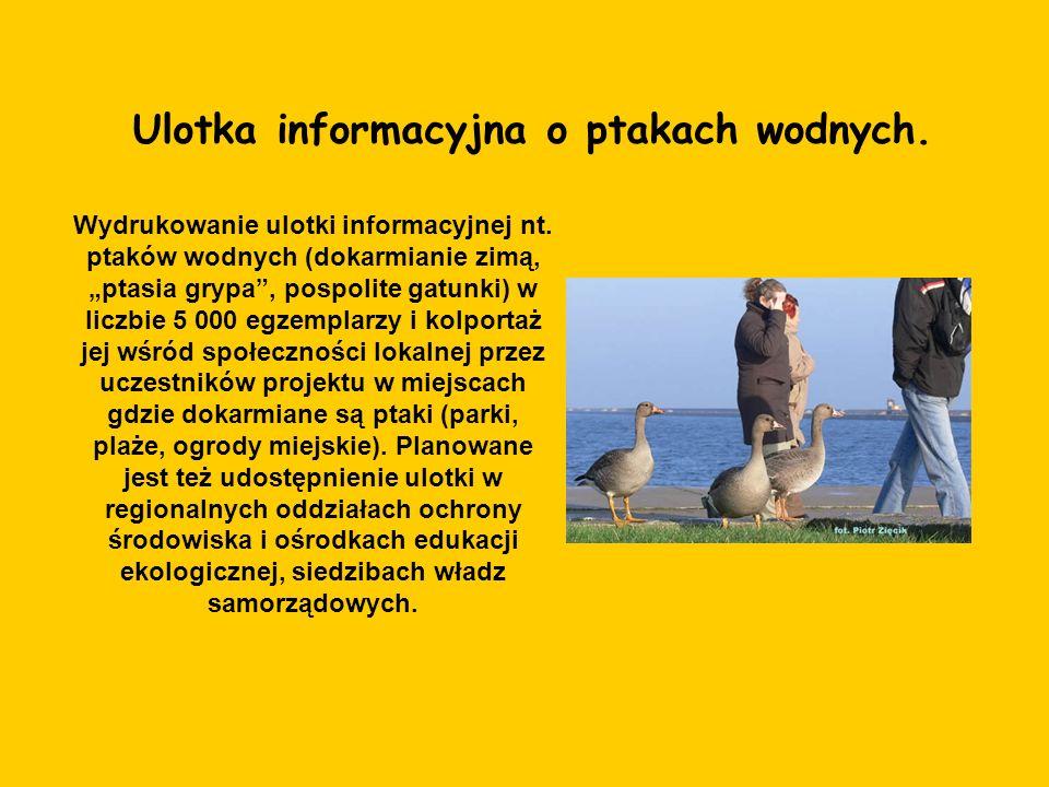 Ulotka informacyjna o ptakach wodnych. Wydrukowanie ulotki informacyjnej nt. ptaków wodnych (dokarmianie zimą, ptasia grypa, pospolite gatunki) w licz