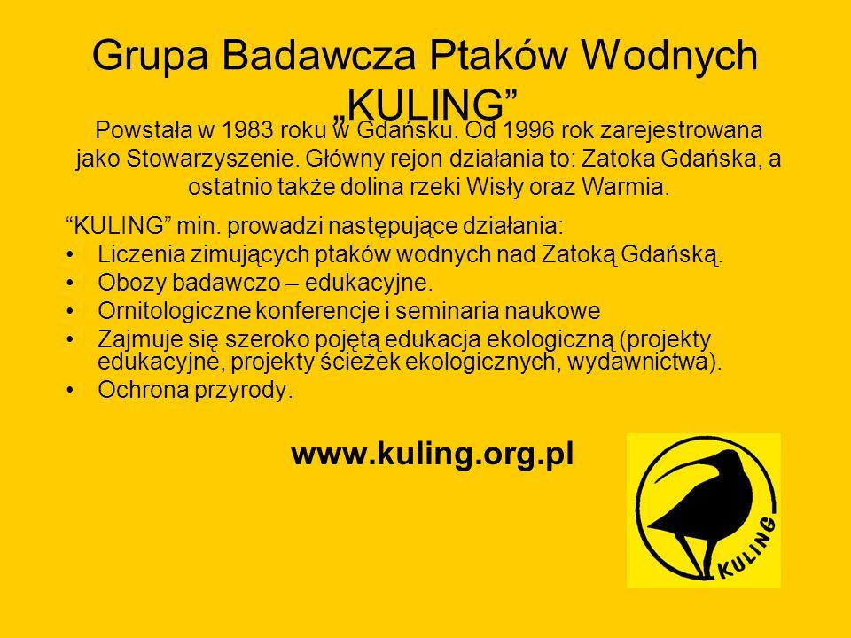 Grupa Badawcza Ptaków Wodnych KULING KULING min. prowadzi następujące działania: Liczenia zimujących ptaków wodnych nad Zatoką Gdańską. Obozy badawczo