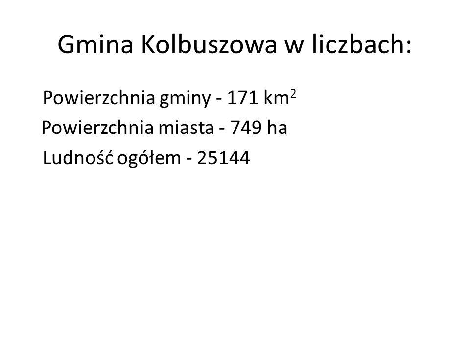 Gmina Kolbuszowa w liczbach: Powierzchnia gminy - 171 km 2 Powierzchnia miasta - 749 ha Ludność ogółem - 25144