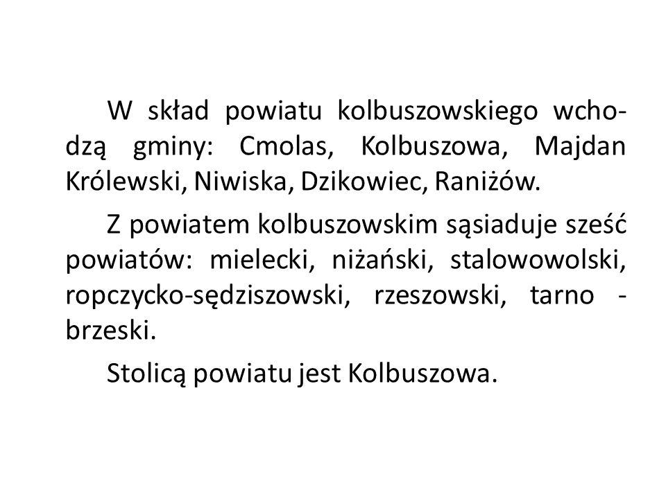 W skład powiatu kolbuszowskiego wcho- dzą gminy: Cmolas, Kolbuszowa, Majdan Królewski, Niwiska, Dzikowiec, Raniżów. Z powiatem kolbuszowskim sąsiaduje