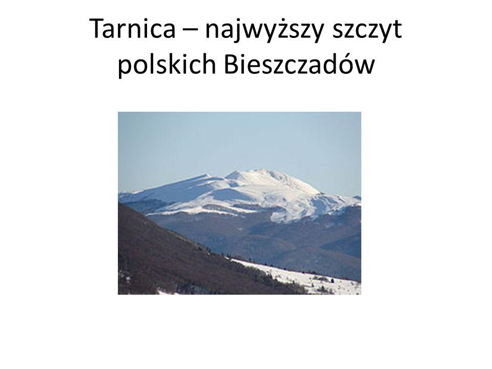 Tarnica – najwyższy szczyt polskich Bieszczadów