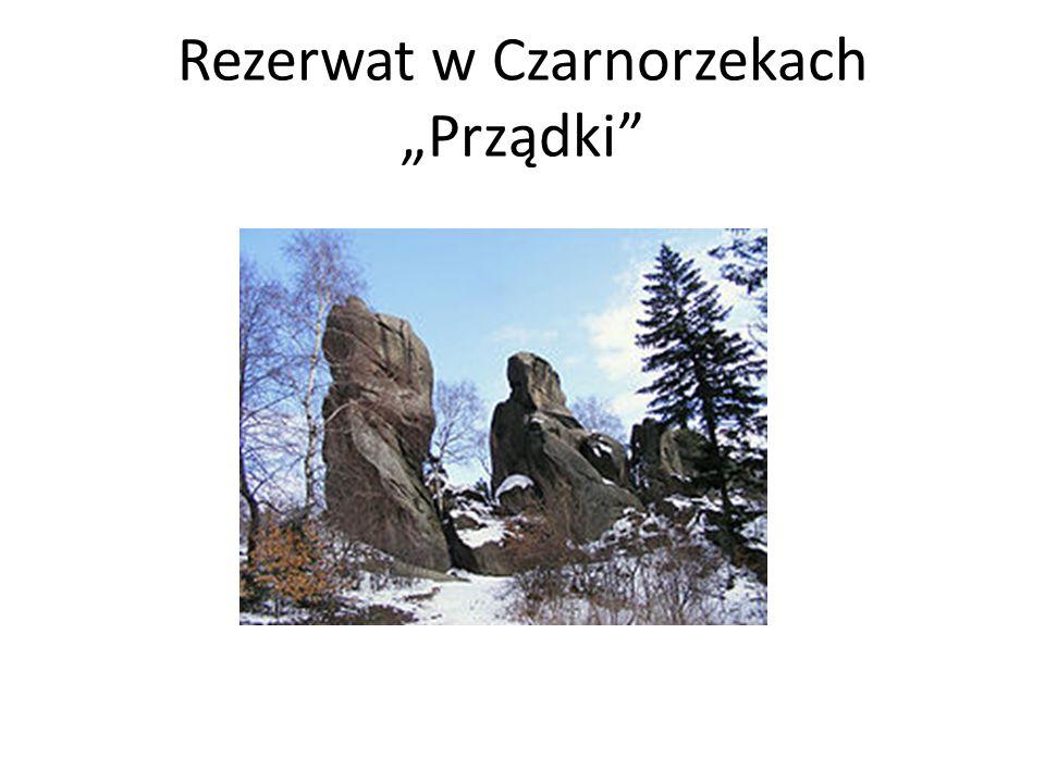 Rezerwat w Czarnorzekach Prządki