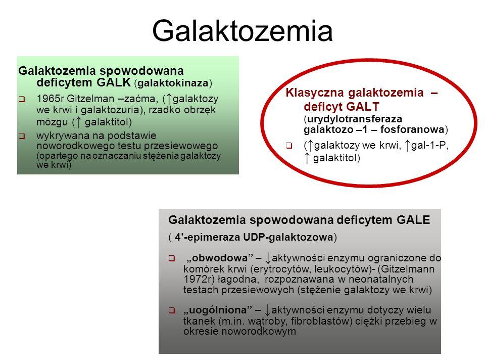 Podstawą rozpoznania galaktozemii klasycznej jest Wykazanie niedoboru (brak lub deficyt) galaktozo-1-urydylotransferazy (GALT) a)ilościowo - w krwinkach czerwonych (patologiczny jeśli < 3,5 /gHb) Wynik fałszywie dodatni (fałszywy brak aktywności GALT) uzyskuje się w przypadku: hemolizy hemolizy (wyciskanie krwi podczas pobierania powoduje uszkodzenie erytrocytów) suszenia bibułki / przechowywania w zbyt wysokiej temperaturze (następuje denaturacja białka enzymatycznego ) zawilgocenia zawilgocenia (transport niedosuszonej bibułki w torebce plastikowej) zbyt długiego przechowywania bibułki po pobraniu zbyt długiego przechowywania bibułki po pobraniu (spadek aktywności enzymu)
