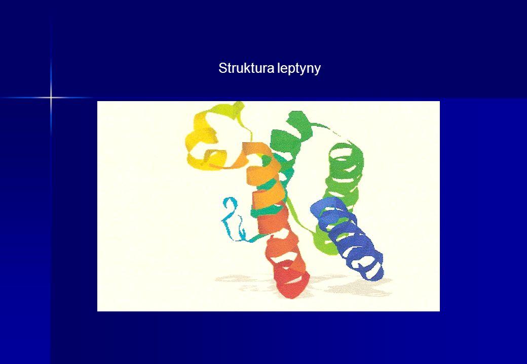 Struktura leptyny