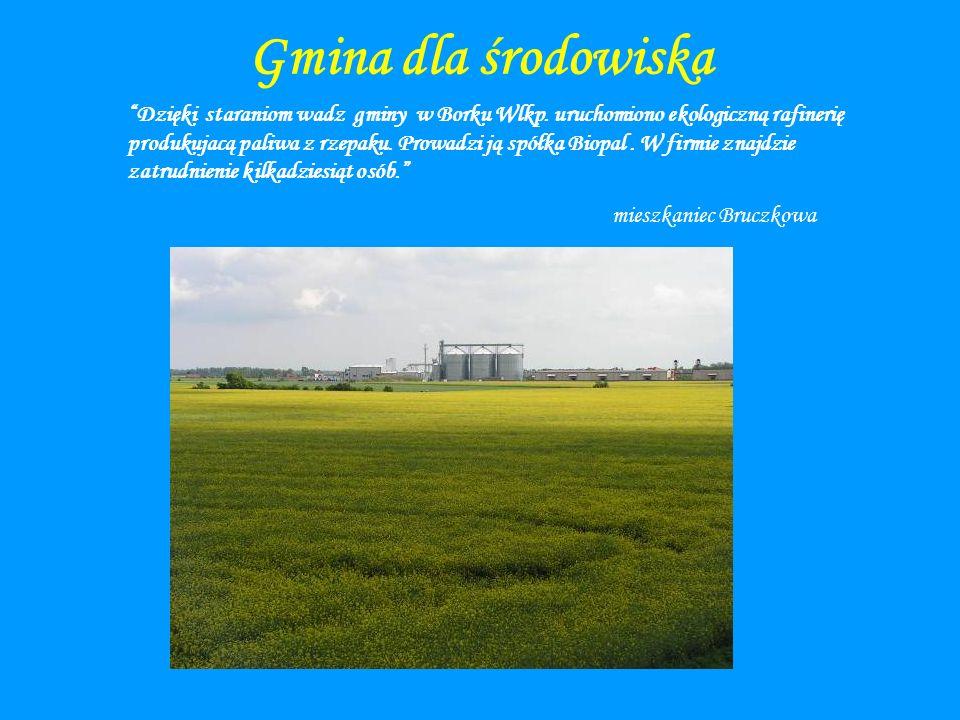 Gmina dla środowiska Dzięki staraniom wadz gminy w Borku Wlkp. uruchomiono ekologiczną rafinerię produkujacą paliwa z rzepaku. Prowadzi ją spółka Biop