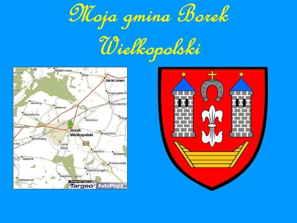 Moja gmina Borek Wielkopolski