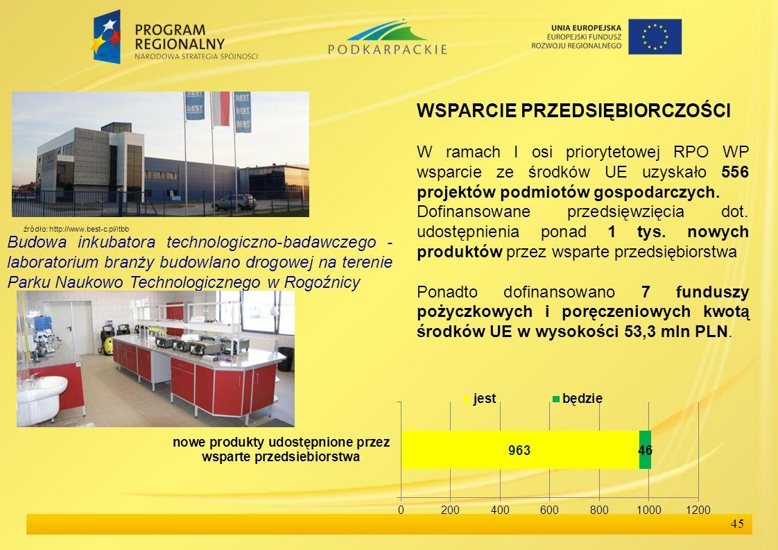 45 WSPARCIE PRZEDSIĘBIORCZOŚCI W ramach I osi priorytetowej RPO WP wsparcie ze środków UE uzyskało 556 projektów podmiotów gospodarczych. Dofinansowan