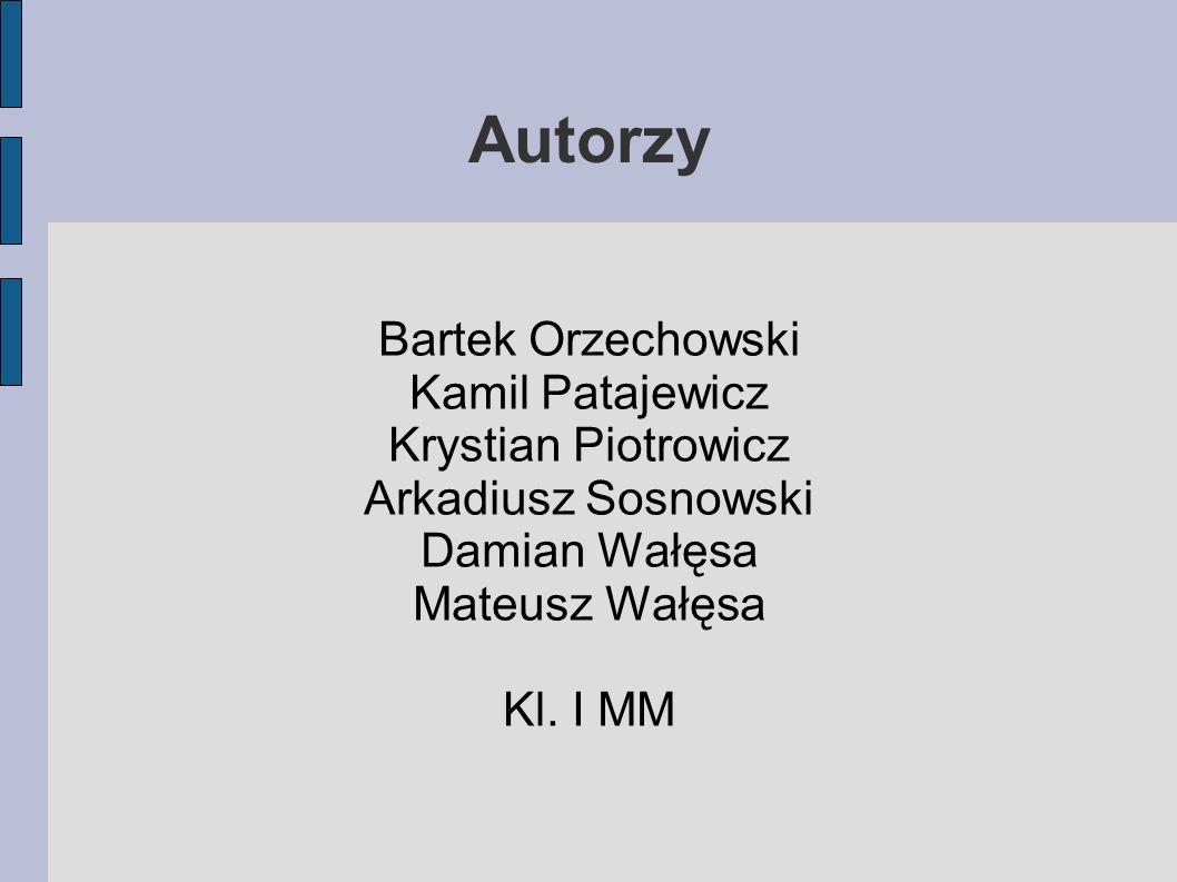 Autorzy Bartek Orzechowski Kamil Patajewicz Krystian Piotrowicz Arkadiusz Sosnowski Damian Wałęsa Mateusz Wałęsa Kl. I MM