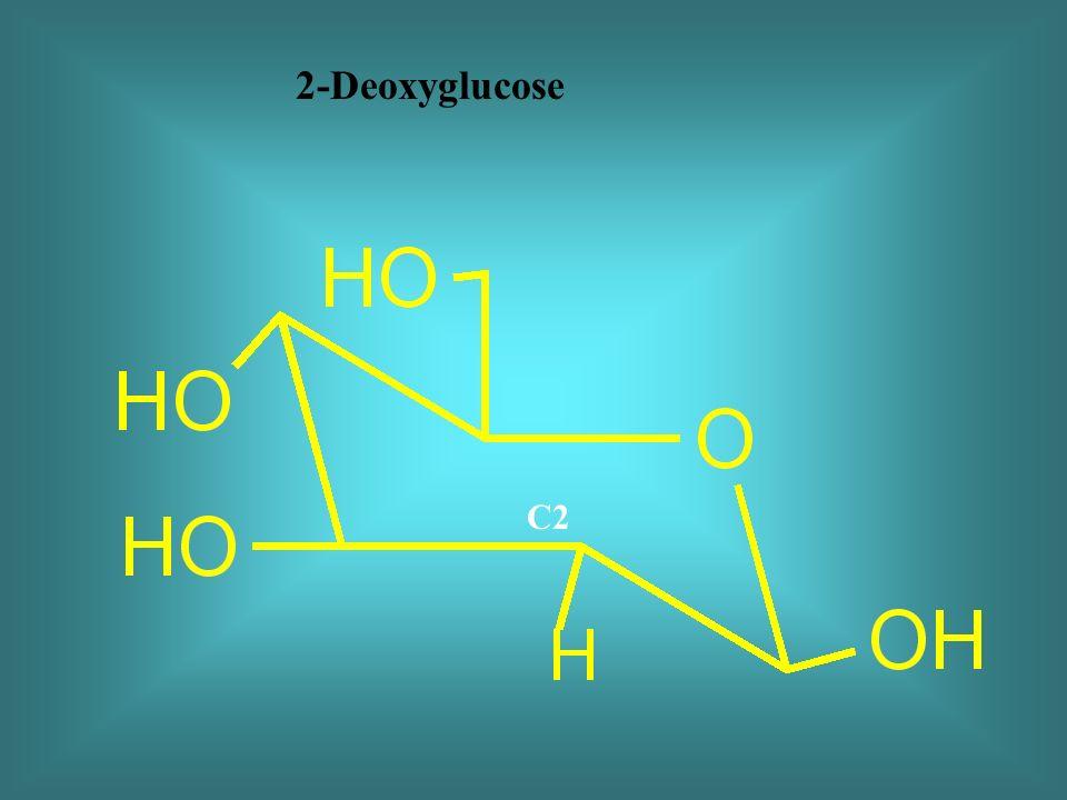 2-Deoxyglucose C2