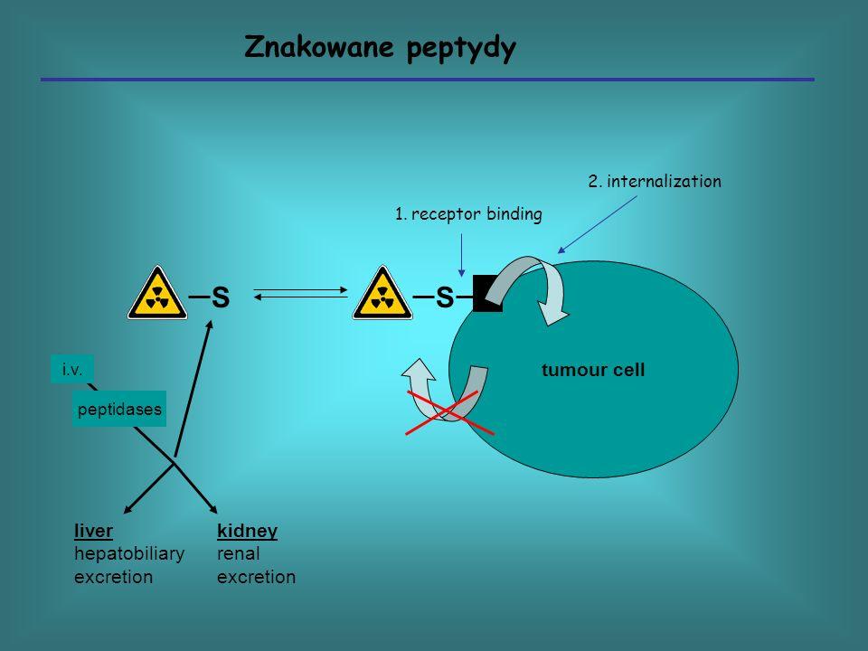 tumour cell SS liver hepatobiliary excretion kidney renal excretion i.v. peptidases 1. receptor binding 2. internalization Znakowane peptydy